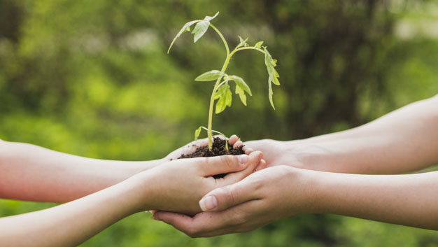 Gestão Agroambiental
