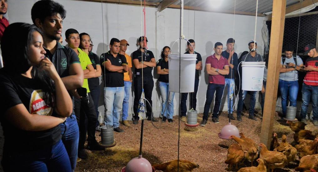 Alunos de Agronomia participam de aula prática sobre o manejo na criação de galinhas caipira